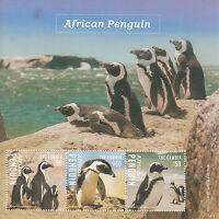 Gambia 2014 MNH African Penguin 3v M/S I Birds Spheniscus Demersus
