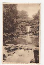 Newcastle On Tyne Jesmond Dene The Old Bridge Vintage Postcard  220a