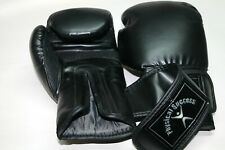12oz Boxing Gloves For Young Adults.