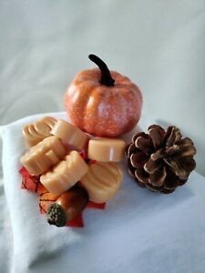 Highly Scented Pumpkin Spice Soy Wax Melts Pack Of 6