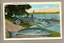 Postcard Execrated Fish Fishing with Old Car Fisherman Huge Fish c1920s 1249A