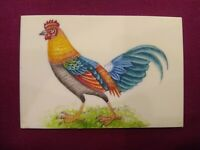 Hand Painted Hen Chicken Bird Birds Miniature Painting India Art Synthetic Ivory