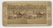 GOAT DRAWN CARRIAGE w/ CHILDREN, STEREOVIEW, AMERICA ILLUSTRATED SUBSCRIPTIION