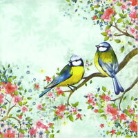 4x Single Table Party Paper Napkins for Decoupage Decopatch Craft Bird Watching