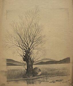 E. Schneider Zeichnung Baum Weide mit Stein am Ufer Bleistift