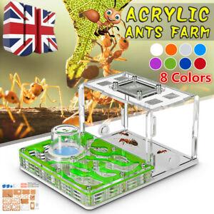 Acrylic Ant Nest Food Feeding Area Ant Live House Farm Formicarium Education