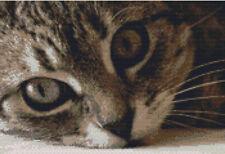 CROSS STITCH KIT - CUTE TABBY CAT FACE 31CM X 21CM