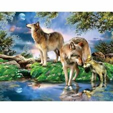 "Full round diamond 5D DIY Diamond Painting Photo Custom ""Night wolf"" 3D Emb Z4D7"
