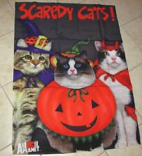 Animal Planet Halloween Scaredy Cats 3 Kitty's Dressed For Halloween Large Flag