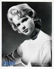 Anne Francis busty sexy 1956 VINTAGE Photo