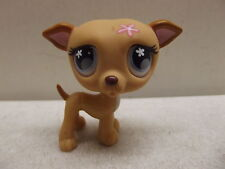 LITTLEST PET SHOP LPS PUPPY DOG WHIPPET GREY FLOWER EYES # 498