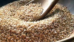Pure Organic Ceylon White Gingelly/Sesame Seeds 100g pack