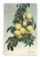 California CA Grape Fruit California Fruit Products Co. Colton Advertising Card