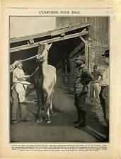 Soldats Poilus Uniforme Camouflage Chevaux Cheval Cavalrie Armée France 1915 WWI