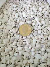 10 POUNDS CRUSHED OYSTER SHELLS GOOD FOR FERITIZER ADDITIVE FOR PLANTS