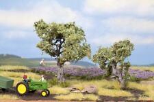 Olivenbäume 2 Stück 6 und 9 cm Noch 21995