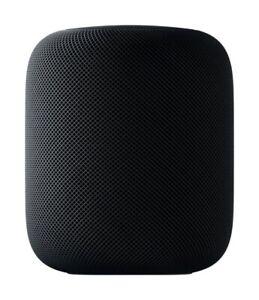 Apple HomePod Spacegrau Sehr gut US mit EU Adapter