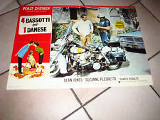 4 BASSOTTI PER 1 DANESE WALT DISNEY DEAN JONES AUTO CAR MOTORCYCLE MOTO FOTOBUST