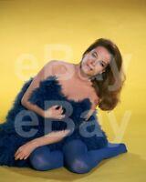 Luciana Paluzzi 10x8 Foto