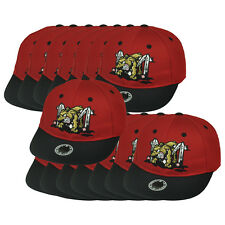 MiLB Batavia Muckdogs Minor League Twill Kids Set Of 15 Baseball  Hat Cap
