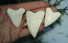 LOT OF 3 MEGALODON SHARKS TEETH REPLICA/ VERY NICE!!/MEGALODON TOOTH