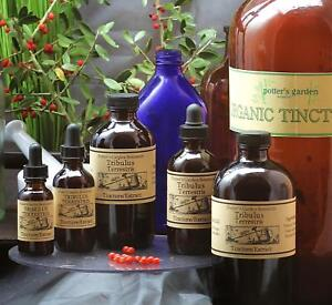 PUNCTURE VINE Extract Ayurveda Stamina Wellbeing Folk Remedy Tincture Wildcraft