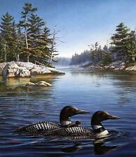 """James Meger """"Legacy""""  Common Loon Print Signed and Numbered conservation Ed"""