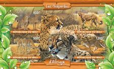 GEPARDS of Africa wild cats animals African fauna 2020 m/s MNH #ML20-33 IMPERF