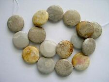 Coral fossil agate coin beads 25mm. Natural gemstone beads. Full strand