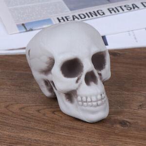 Plastic Mini Human Skull Decor Prop Skeleton Head Halloween Coffee Bars _dmJ^lk
