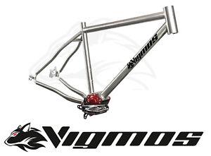 Pinion Titan Rahmen frame MTB 26 28 29 Fatbike Gates titanium Trekking Reiserad