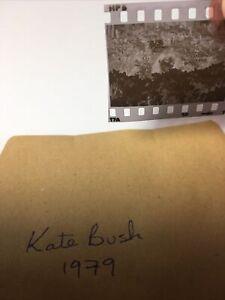 Kate Bush.   1979. 1x1. Vintage Original Negative .