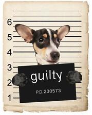 Rat Terrier Mugshot Bad Dog Fridge refrigerator Car Magnet