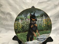 Danbury Mint Sneaking A Peek Miniature Pinscher Dog Pet Lover Plate