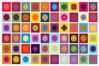 Colored Lotus Flowers Pop Art Print Mural inch Poster 36x54 inch