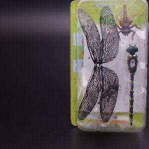 Kaiyodo Furuta Insect Anotogaster Sieboldii
