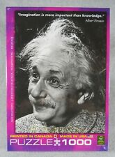 EINSTEIN IMAGINATION-More Important than Knowledge 1000 pc Puzzle 19 X 27 NEW!