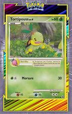 🌈Tortipouss - DP05:Aube Majestueuse - 78/100 - Carte Pokemon Neuve Française