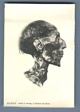 Egypt, Head of Mummy of ramses the Great  Vintage print. Tirage argentique