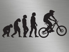 MTB Mountain Biker Cycling Evolution vinyl decals stickers graphics, cars, vans