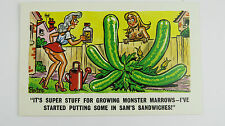 1960 Risque Funny Postcard Big Boobs Sam Gardener Allotment Giant Marrow Viagra