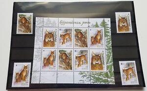 Belarus stamp MNH - Lynx lynx - Booklet of 8+4 spares - original package - 2000
