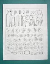 ROMAN MUSICAL Instruments & Coins - 1825 Antique Print