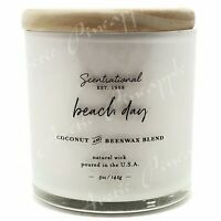 Scentsational Coconut & Beeswax 5oz Single Wick Small Candle - Beach Day