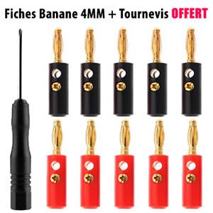Lot fiche banane 4 mm male à vis sans soudure pour câble enceinte haut parleur