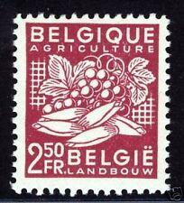 Belgium  1948  Scott # 380  MNH