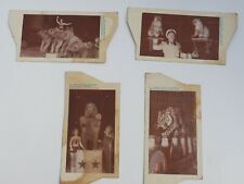 5 Quaker Oats Co 1953 Polack Brothers Circus video cards Tiger Elephant Lions