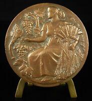 Medal Allegorie Agriculture Harvest Harvest Allegory Harvest Cluster Medal