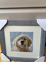 """John Weiss Limited Edition #, Signed Print """"Let's Play"""" Yellow Lab Puppy Art"""
