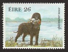 Irish Water Spaniel * Int'l Dog Postage Stamp Art * Great Gift Idea *